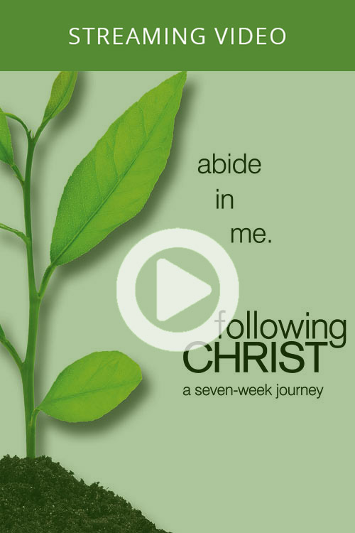 2011 Ed. - Following Christ (On-Demand)